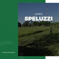 Foto Otro en Speluzzi Speluzzi número 1