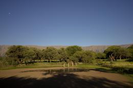 Foto Condominio en Centro Rodeo de Los Cocos 1500 número 8