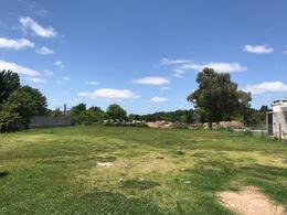 Foto Condominio Industrial en Beccar Treinta y Tres Orientales 1180 número 8