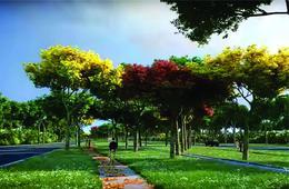 Foto Barrio Privado en Muxupip PAXIFICA CITY se encuentra ubicada al oriente de la ciudad de Mérida, Yucatán, en el municipio de Muxupip a tan solo 18 minutos. Cuenta con una inmejorable ubicación y accesibilidad gracias a la carre número 6