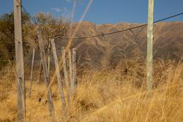 Foto Barrio Abierto en La Eloisa Carpinteria número 10