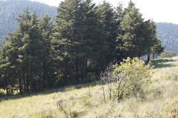 Foto Barrio Privado en Cañada de Alférez Cañada de Alférez número 10