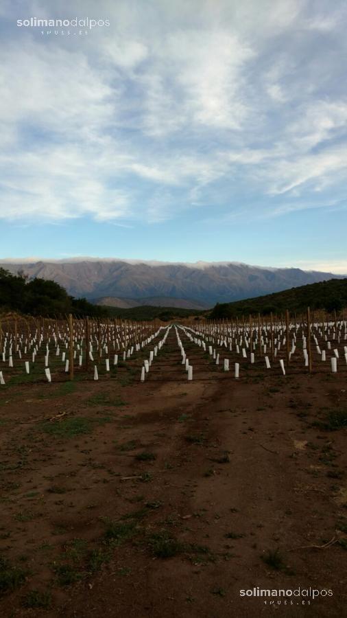 Foto Otro en Nono Pasos del Valle - Cordoba número 8