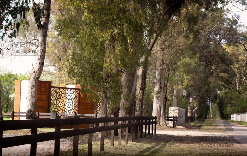 Foto Terreno en Venta en  Villa Elisa,  La Plata  al 400