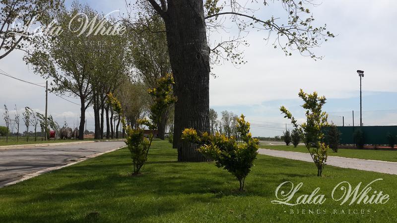 Foto Barrio Privado en La Alameda Ruta 58, Km 9.5 número 4