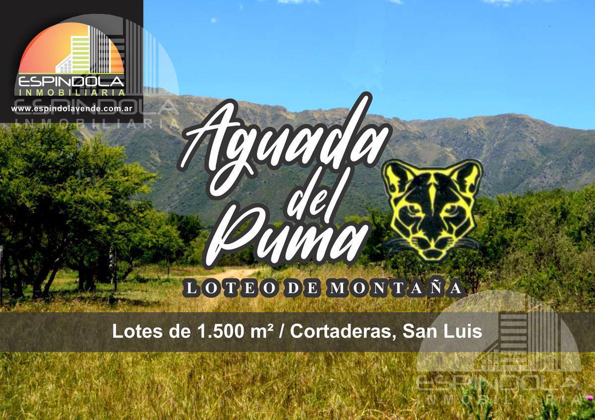 Foto  en Cortaderas Ruta 1