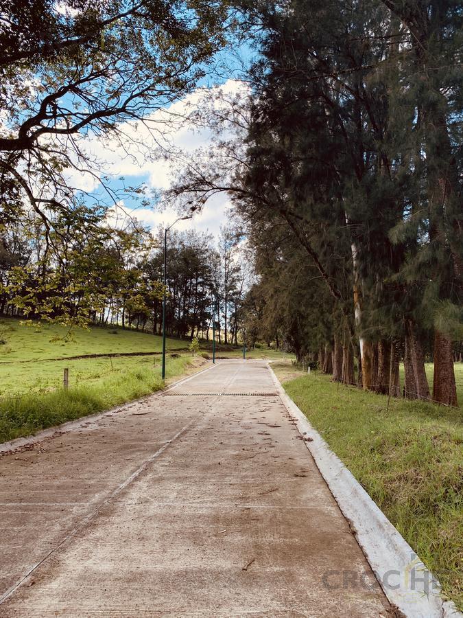 Foto Barrio Privado en Fraccionamiento Coapexpan Fraccionamiento El Manantial número 38