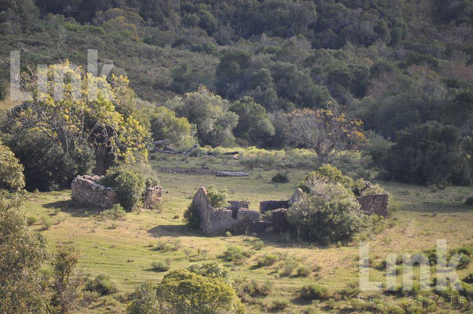 Foto Chacra en Venta en  Pueblo Edén ,  Maldonado  Pueblo Edén