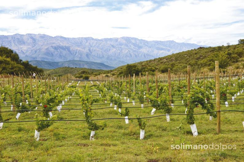 Foto Otro en Nono Pasos del Valle - Cordoba número 17