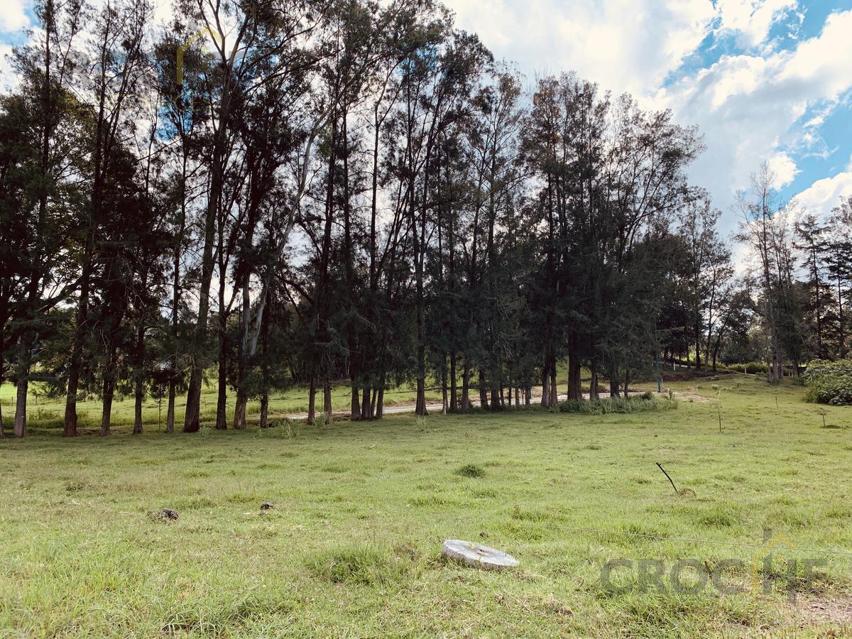 Foto Barrio Privado en Fraccionamiento Coapexpan Fraccionamiento El Manantial número 36