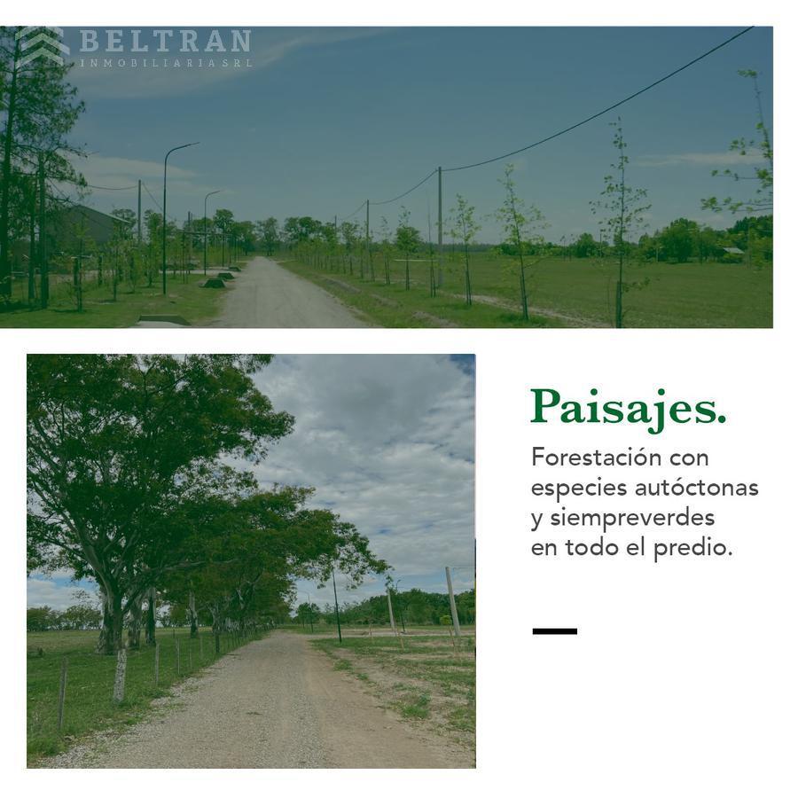 Foto  en Piñero Los Pinos III, Piñero