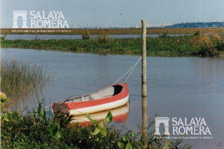 Foto  en Isla Santa Monica Tigre