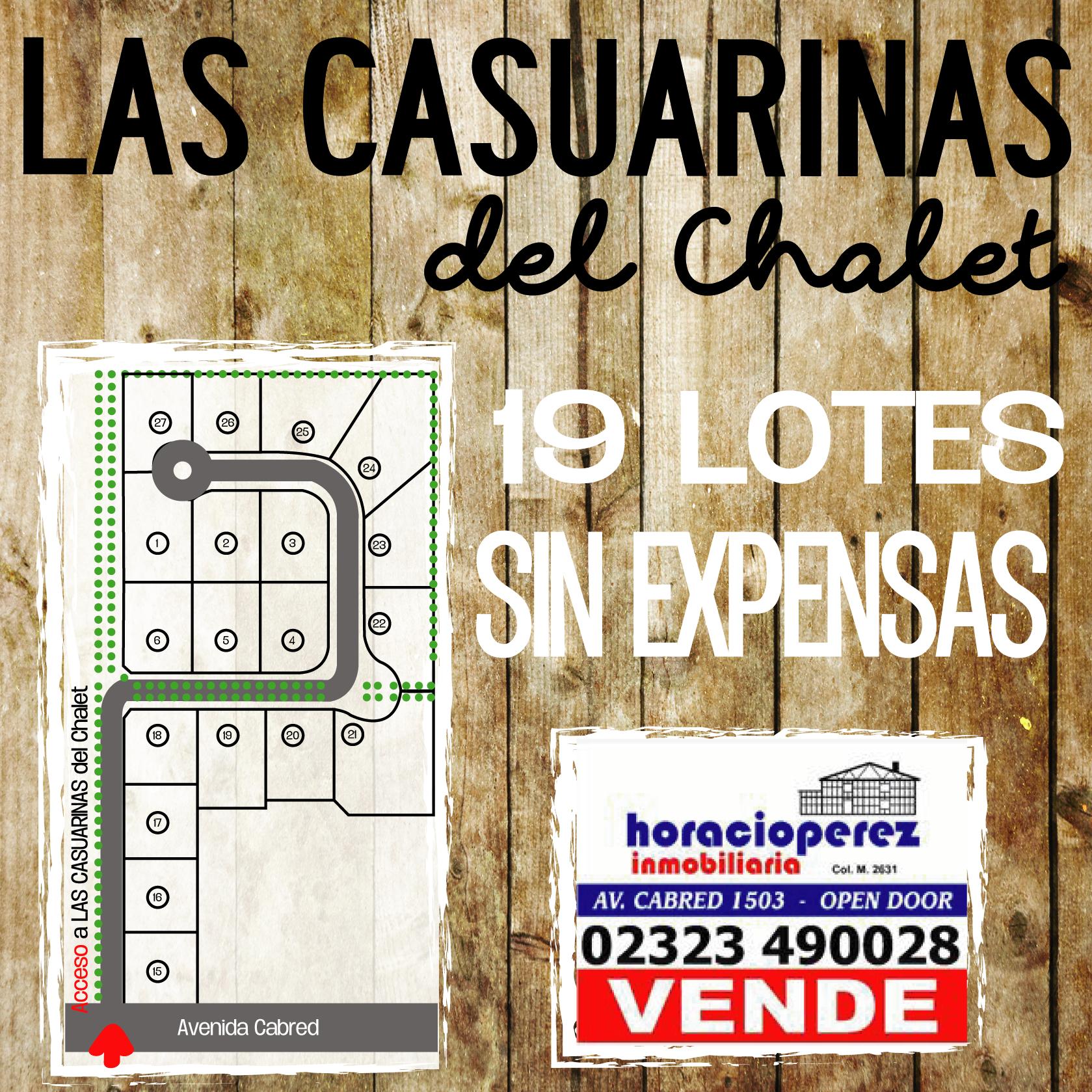 Foto Terreno en Venta |  en  Open Door,  Lujan  Las Casuarinas del Chalet