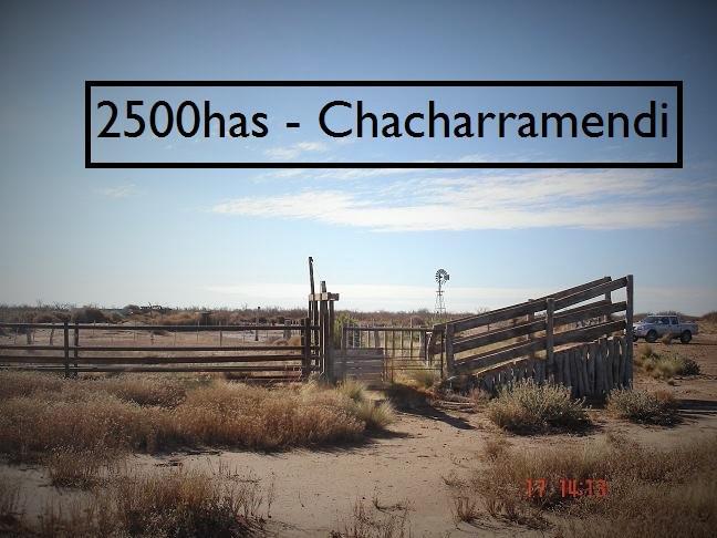 FotoCampo en Venta    en  Chacharramendi,  Utracan  Chacharramendi