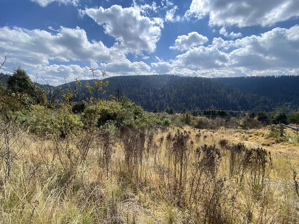 FotoTerreno en Venta |  en  Cañada de Alférez,  Lerma  Terreno en Venta Cañada de Alferez escriturado