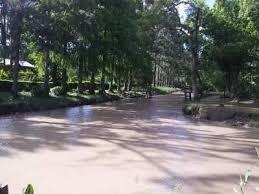 Foto Terreno en Venta |  en  Zona Delta Tigre,  Tigre  Arroyo Toro 1ra Secc al 2600