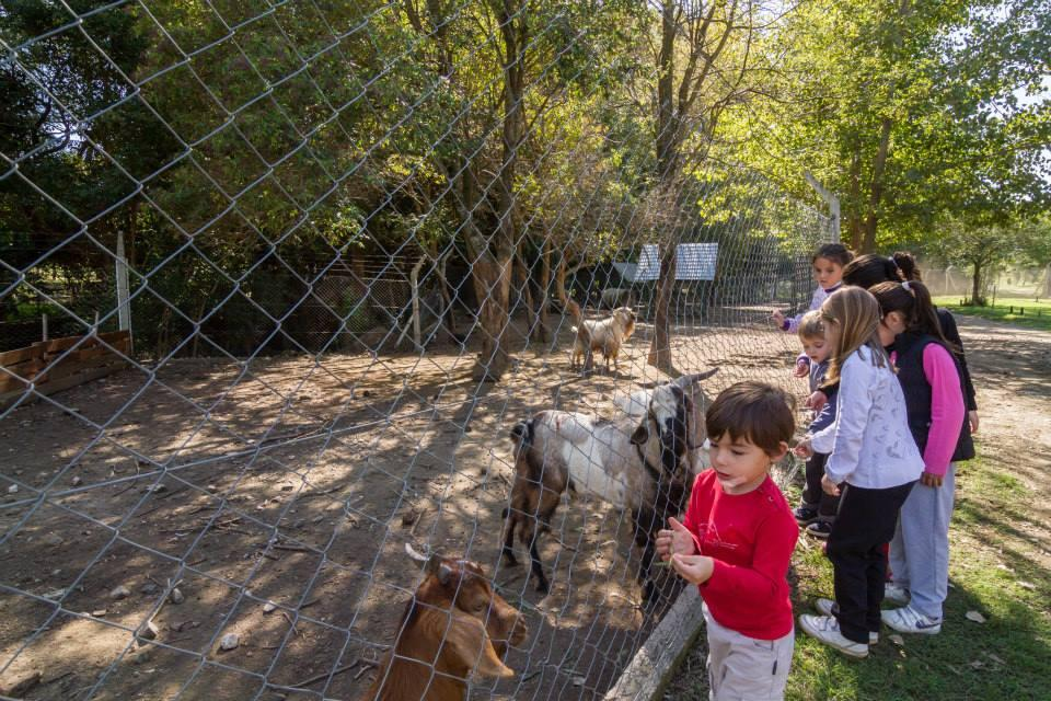 FotoTerreno en Venta    en  Villa Ciudad De America,  Santa Maria  Lago Los Molinos Lote 34A Valle Azul Country Club