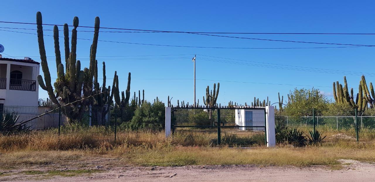 Foto Terreno en Venta |  en  Comitán,  La Paz  LOTE COMITAN
