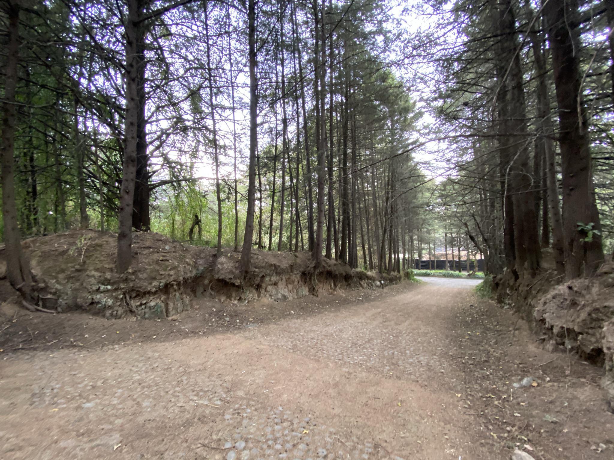 FotoTerreno en Venta    en  Ex-hacienda Jajalpa,  Ocoyoacac  En Venta cuatro terrenos  ExHacienda Jajalpa