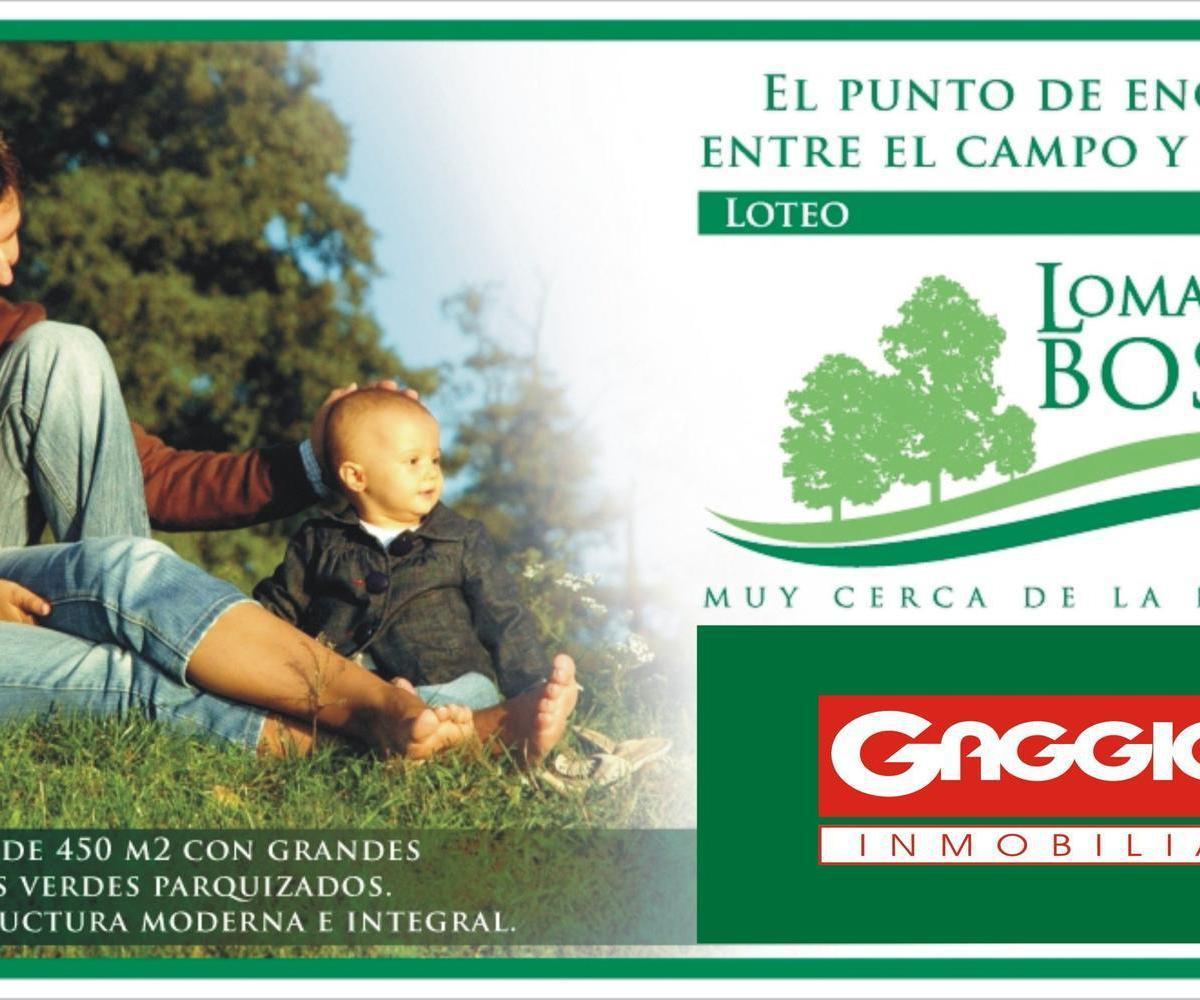 Loteo Lomas del Bosque - Gaggiotti Inmobiliaria cuenta con más de 50 años desde que se inicio en el negocio de los servicios inmobiliarios.