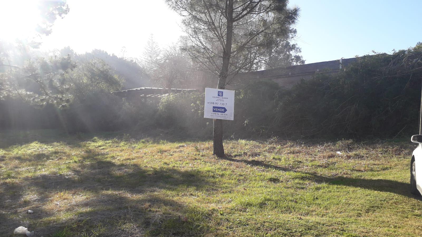 Terreno en Venta en Punta del Este San Rafael