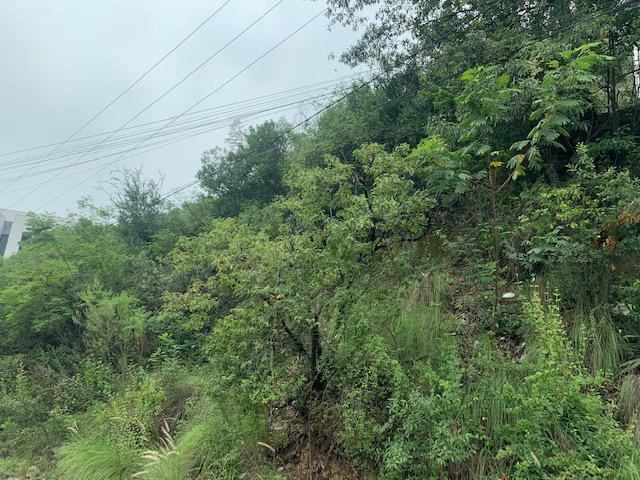 Foto Terreno en Venta en  Residencial Sierra Del Valle,  San Pedro Garza Garcia  VENTA TERRENO SIERRA DEL VALLE SAN PEDRO