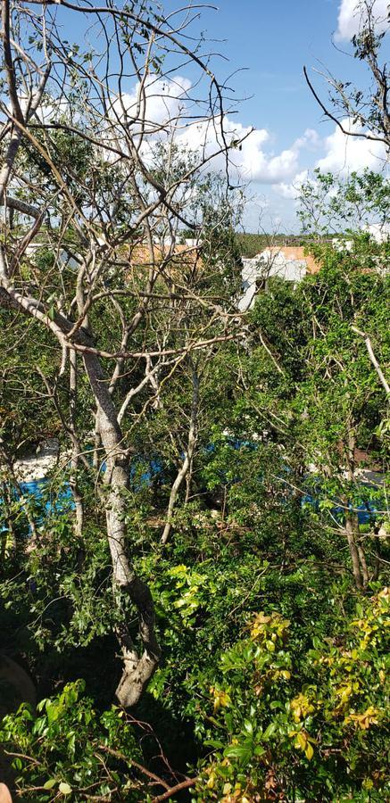 Foto Departamento en Venta | Renta en  Selvamar,  Solidaridad  Selvamar
