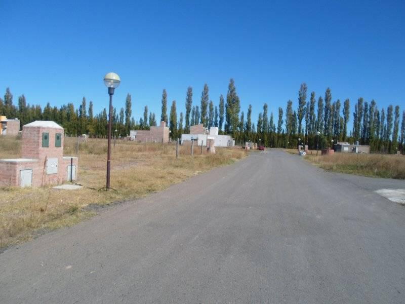 Foto Terreno en Venta en  Plottier,  Confluencia  Los Cerezos al 100