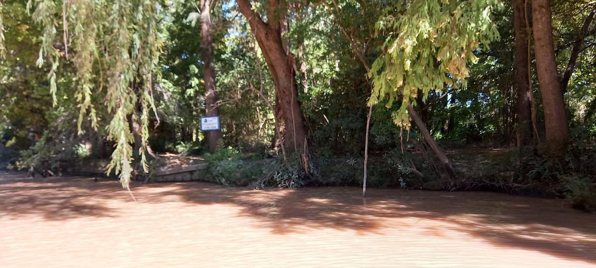 Foto Terreno en Venta en  Arroyon,  Zona Delta Tigre  Arroyón