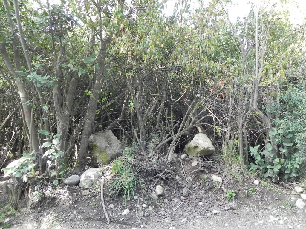 Foto Terreno en Venta en  Bariloche ,  Rio Negro  Rancho Grande-Las Ostras