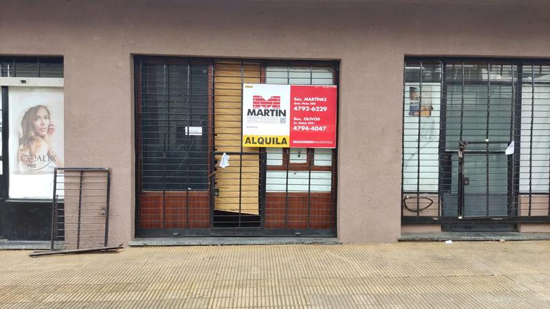 Foto Casa en Alquiler en  Mart.-Santa Fe/Fleming,  Martinez  CUYO al 1400