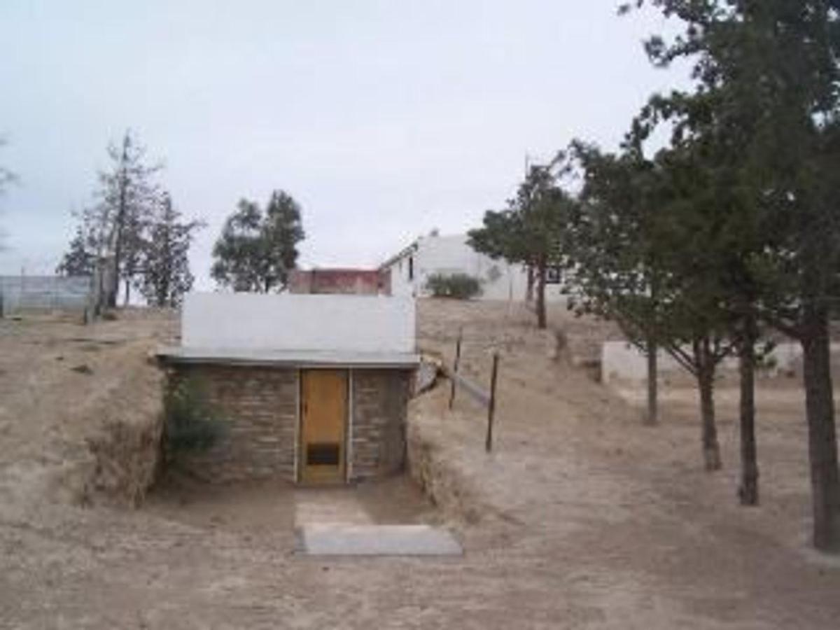 Foto Campo en Venta en  Biedma ,  Chubut  Biedma, Chubut