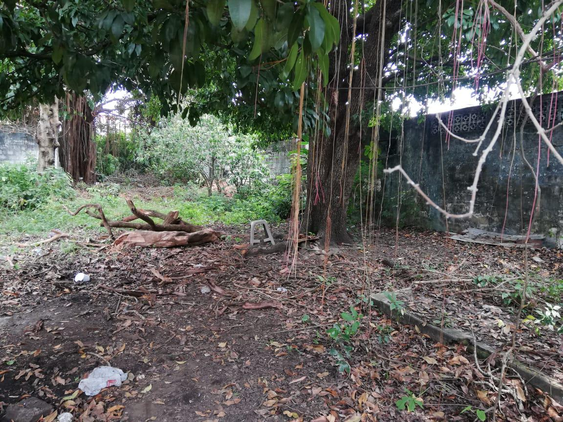 Foto Terreno en Venta en  Catemaco Centro,  Catemaco  TERRENO EN VENTA COLONIA CENTRO CATEMACO VERACRUZ