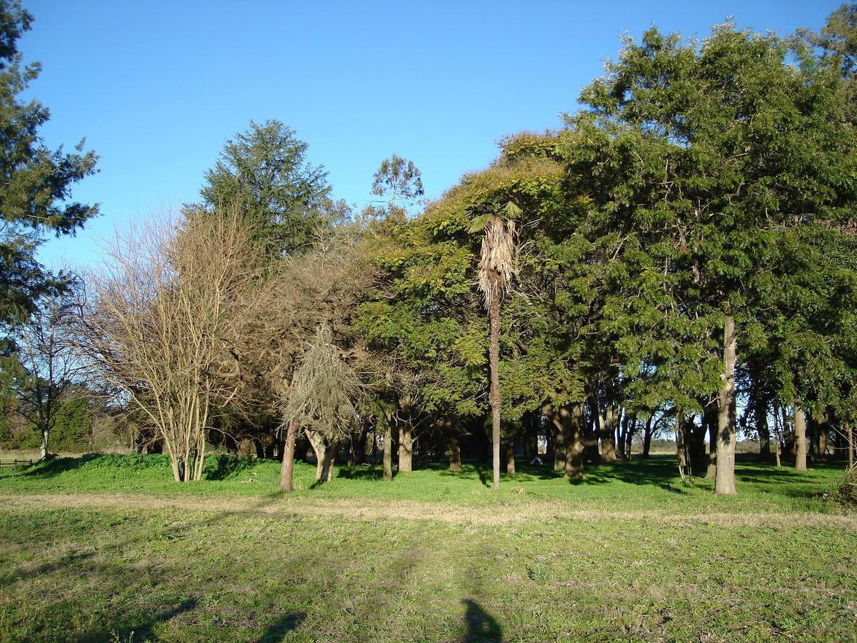 Foto Chacra en Venta en  Los Cardales,  Exaltacion De La Cruz  Entre Cardales y Capilla
