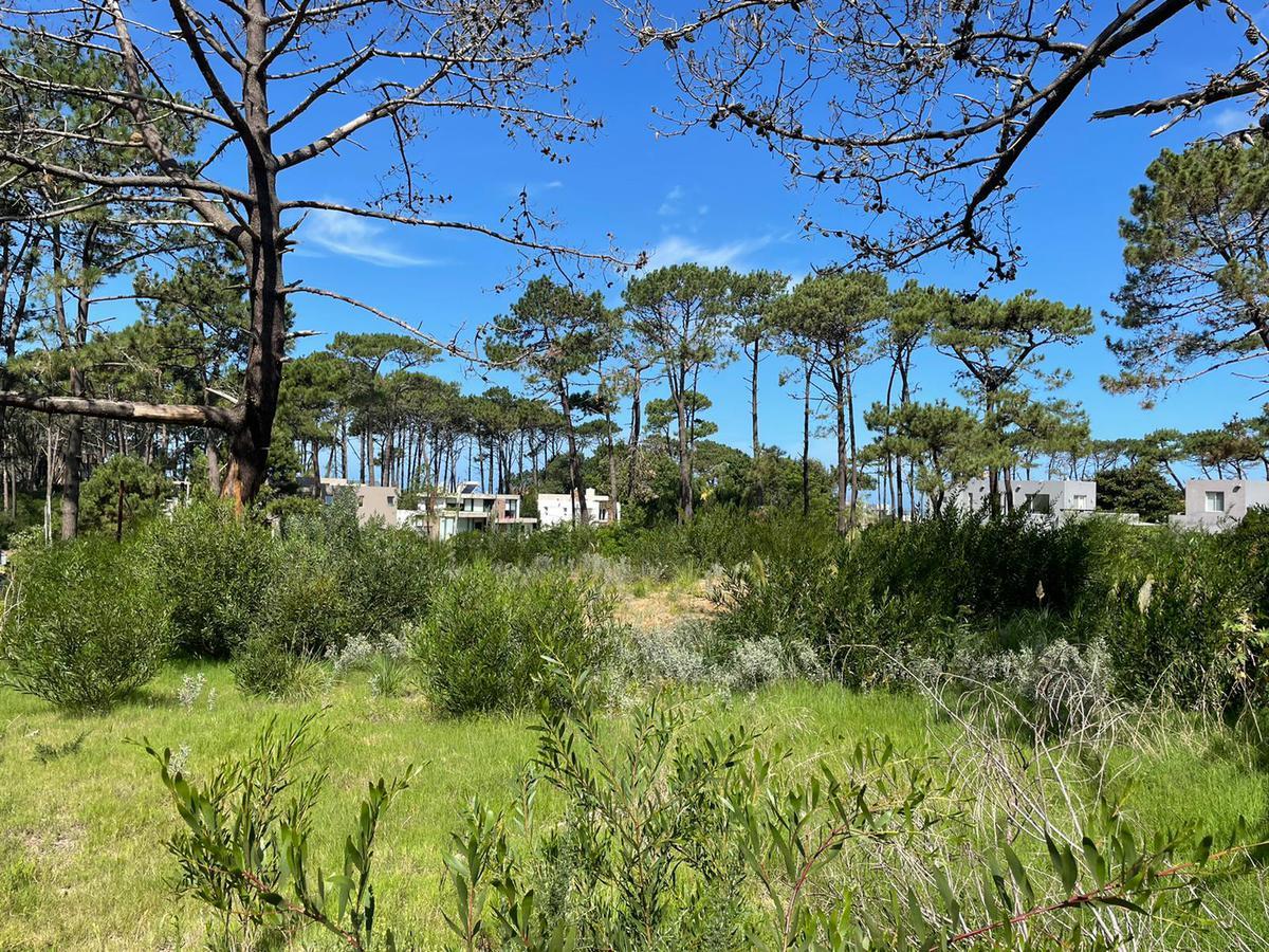 Foto Terreno en Venta en  La Barra ,  Maldonado  Venta terrenos en La Barra- Punta del Este