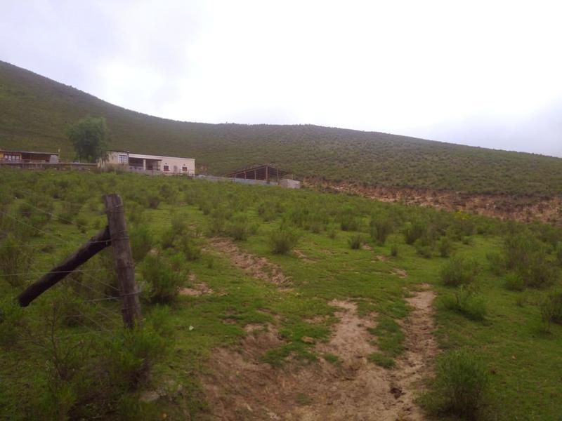 Foto Terreno en Venta en  Tafi Del Valle ,  Tucumán  Costa 1