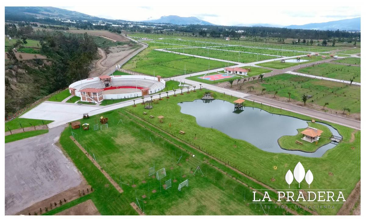 Foto Terreno en Venta en  Tabacundo ,  Pichincha  ESPECTACULARES LOTES EN TABACUNDO MO.