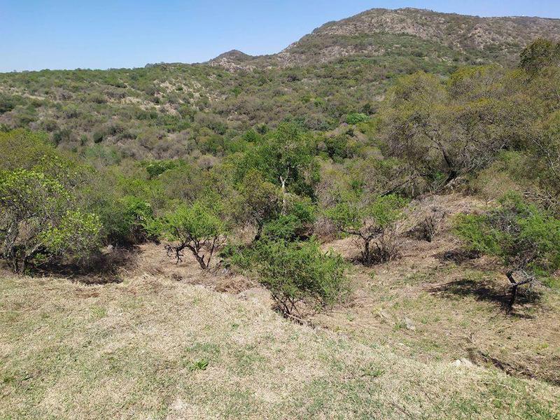 Foto Terreno en Venta en  Villa Carlos Paz,  Punilla  Tierra Alta Comarca 1500