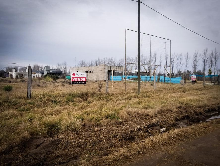 Foto Terreno en Venta en  General Pico,  Maraco  324 y 357 - Pueblo Nuevo