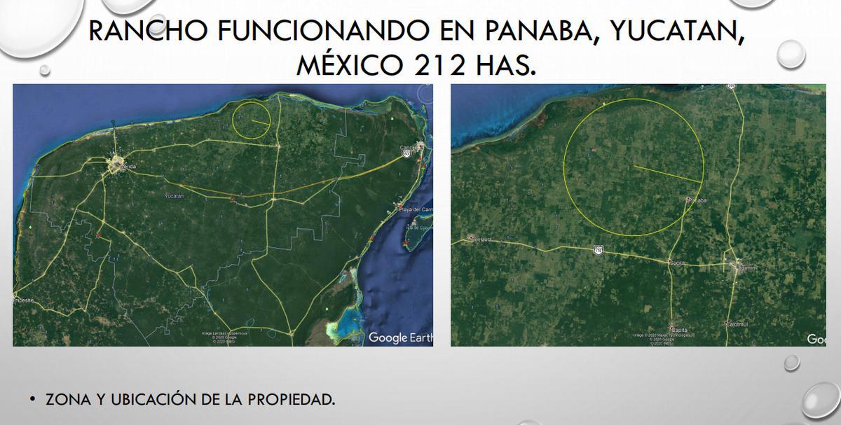 Foto Terreno en Venta en  Panabá ,  Yucatán  EXCELENTE RANCHO EN PANABA , YUC.