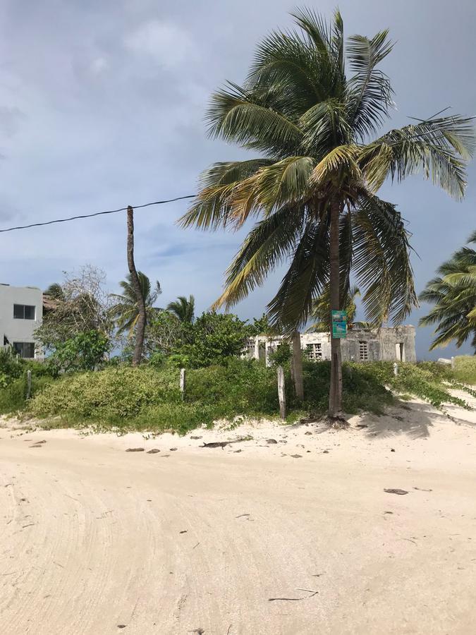 Foto Terreno en Venta en  Pueblo Santa Clara,  Dzidzantún  Terreno en Venta Frente al Mar, en esquina, Santa Clara Yucatan