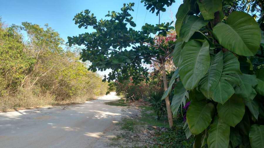 Foto Terreno en Venta en  Quintana Roo ,  Quintana Roo  Lotes Aldea Xcacel