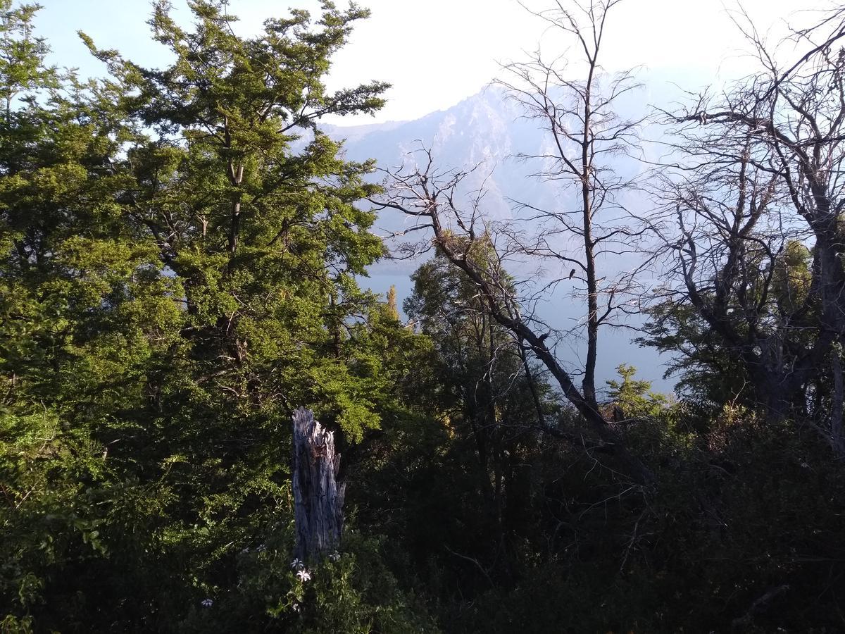 Foto Terreno en Venta en  Cholila,  Cushamen  San Esteban, Lago Cholila