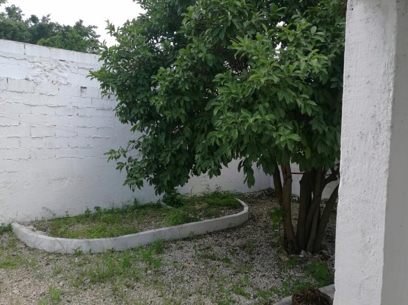 Foto Oficina en Renta en  Garcia Gineres,  Mérida  OFICINA EN AVENIDA CUPULES