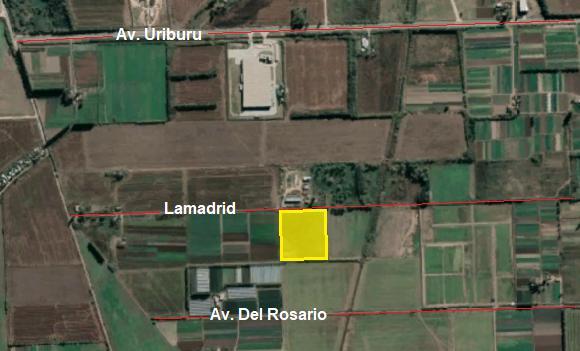 Foto Terreno en Venta en  Rosario ,  Santa Fe  Lamadrid, a 800m de calle limite con Pérez hacia el Oeste.