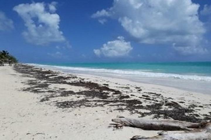 Foto Terreno en Venta en  Benito Juárez ,  Quintana Roo  3 Lotes en venta frente al mar, Isla Blanca