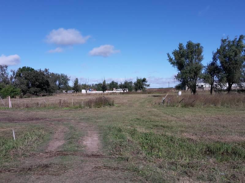 Foto Terreno en Venta en  Luis Palacios,  San Lorenzo  Luis Palacios - Ruta 34 -(L4) Km 22