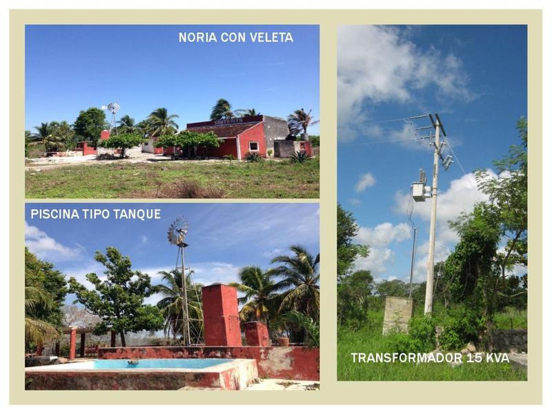 Foto Quinta en Venta en  Temax ,  Yucatán  VENTA DE FINCA SANTA RITA TEMAX, YUCATAN