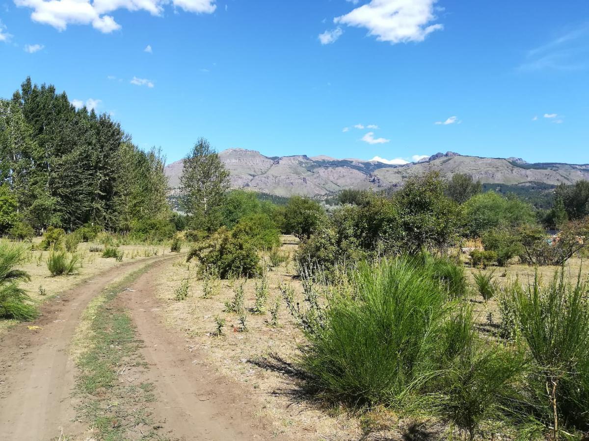 Foto Terreno en Venta en  San Martin De Los Andes,  Lacar  Callejón de Gingins