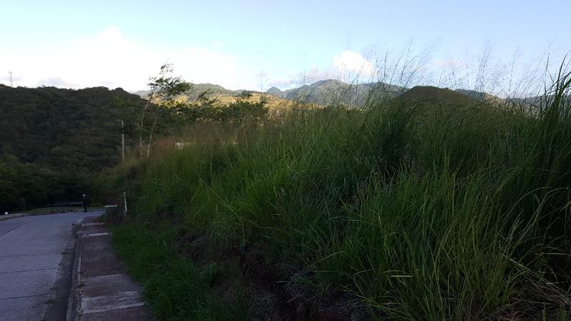 Foto Terreno en Venta en  Lomas del Molino,  Tegucigalpa  TERRENO EN LOMAS DEL MOLINO, Tegucigalpa